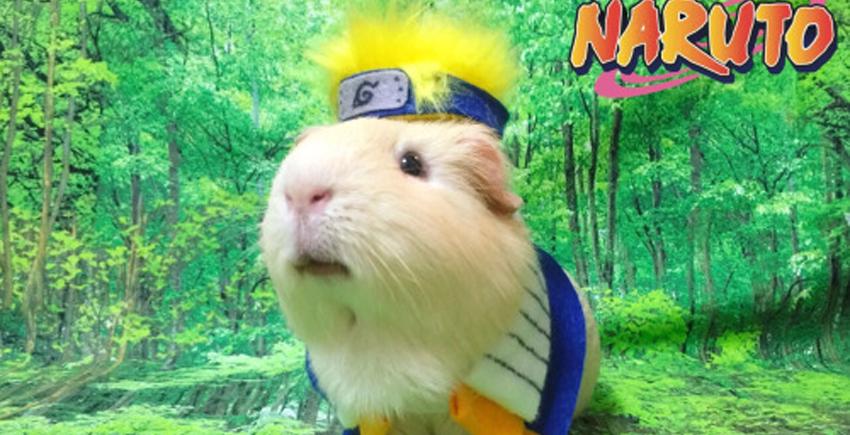 naruto-cosp